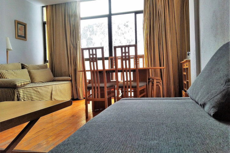 Pirineo 305 Apartamento 4